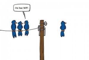 wireless_bird