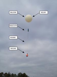 Balloon Figure 2