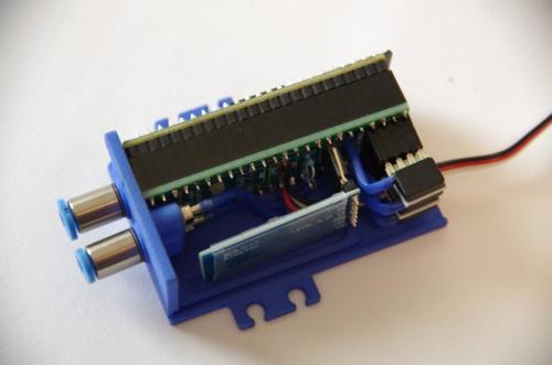 IMGP5526