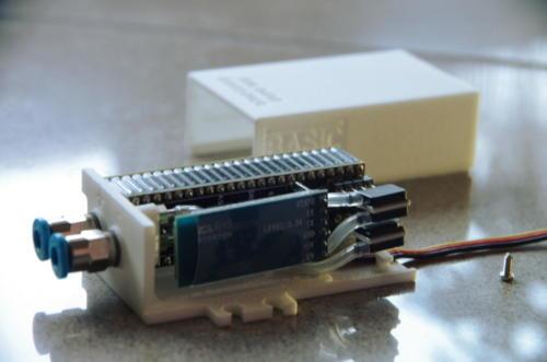 IMGP5652_ms